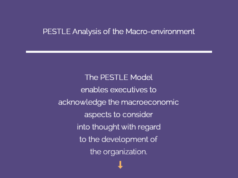 pestle-analysis-of-macro ENVIRONMENT
