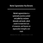 Market Segmentation: Overview & Key Elements market segmentation Market Segmentation: Consumer & Business Markets market segmentation overview and key elements 150x150
