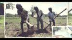 Almost half of the 152 million children in child labour are in hazardous work. T…